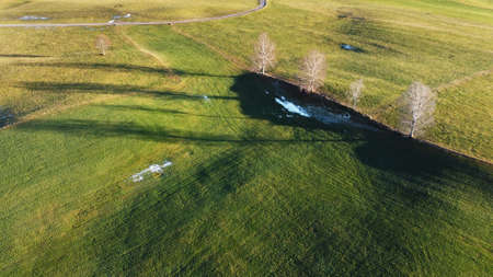 Aerial drone shot of meadow with trees with light and shadow
