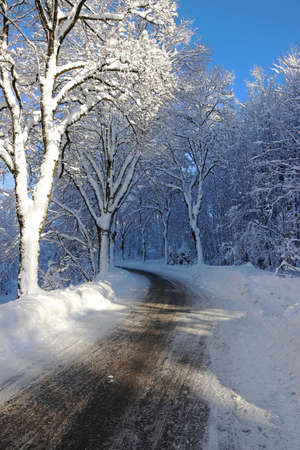 A snowy winter road with trees in Bavaria Standard-Bild