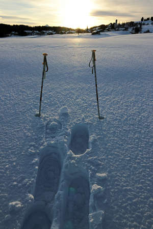 Ski poles and snowshoe tracks in the backlight of the evening sun in the winter snow