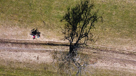 Aerial drone shot of a tree and a bench with a cyclist with light and shadow