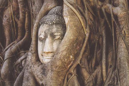Wat-Mahathat Buddha head in tree roots in ancient city of Ayutthaya, Thailand
