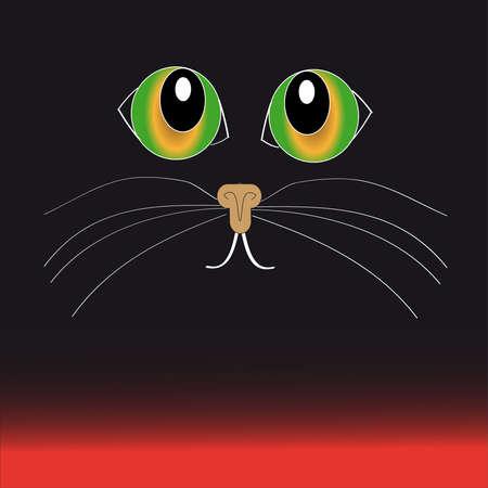 rudeness: Green- yellow cat eyes on black - red  background.Vector illustration Illustration