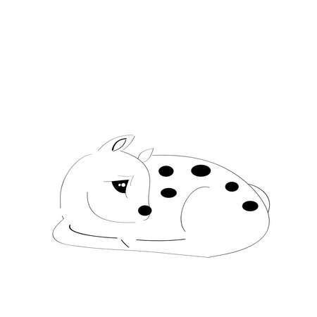 white tail deer: Sleeping fawn on white background.Vector illustration. Illustration