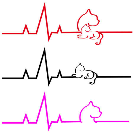 ecg: ECG with cat on white background. Vector illustration.