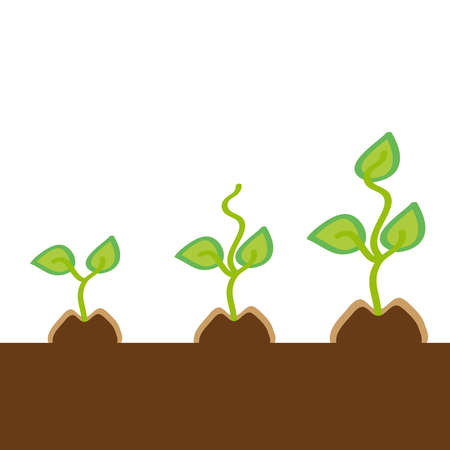 Small plants on white background. Vector illustration.
