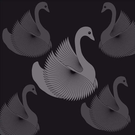 swans: Swans on black background. Vector illustration.
