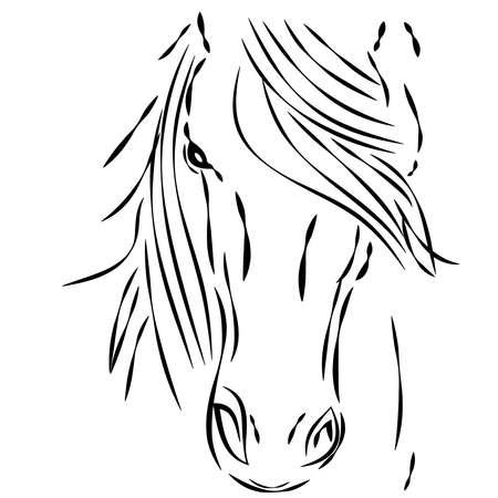 Cabeza de caballo sobre fondo blanco. Ilustración vectorial