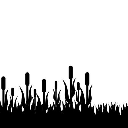 weeds: Reed with gras on white background. Vector illustration. Illustration