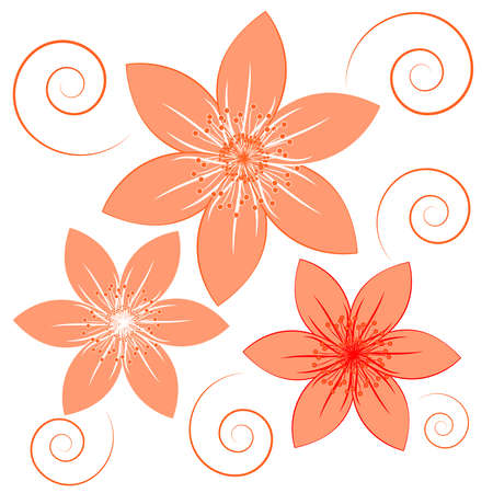 Orange flowers on white background. Vector illustartion.