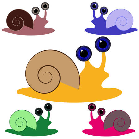 Color snail on white background. Vector illustration.