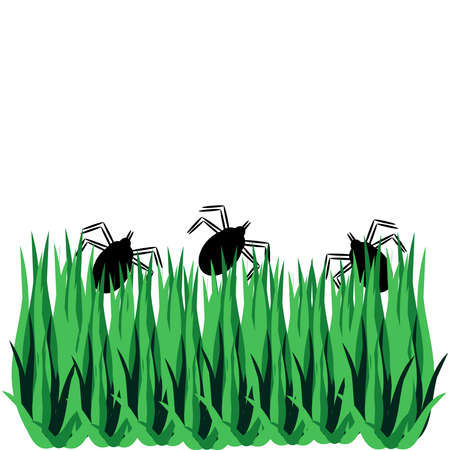 Tick with grass isolated on white background. Vector illustration.
