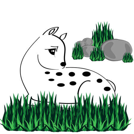 Sleeping fawn with grass on white background.Vector illustration. Stock Photo