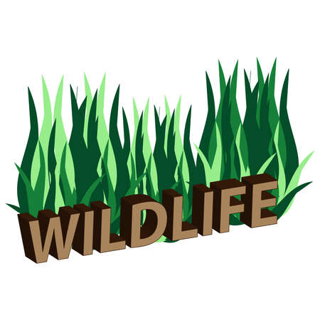 3D text wildlife  isolated on white background. Vector illustration,