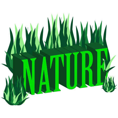 3D text nature  isolated on white background. Vector illustration Illustration