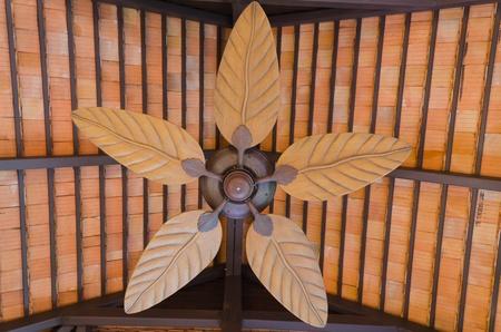 Wooden fan photo