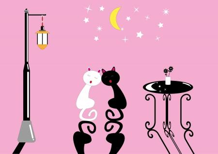 espejismo: Noche gato
