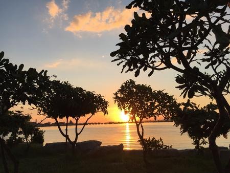 sillouette: Sundown at sriracha