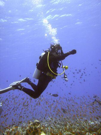 Scuba diver Stock Photo - 477271