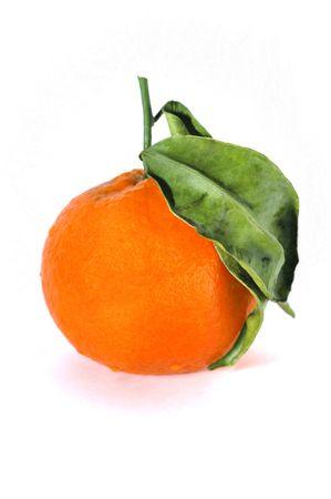 citrus reticulata: Mandarin (Citrus reticulata) fruit against white background, isolated