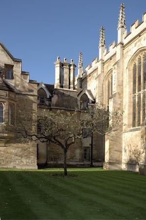 sceptre: Newton apple tree in front of trinity college, Cambridge Stock Photo
