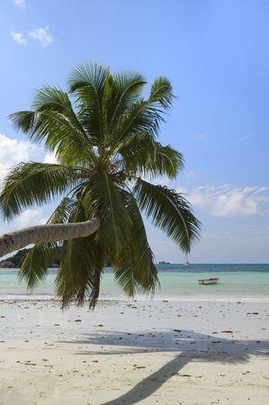 Cote d'Or beach, Praslin  island, Seychelles Stock Photo - 952879
