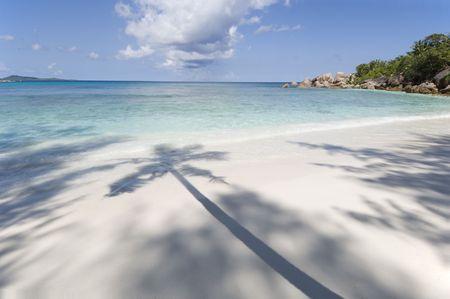 Grand Anse beach, palm shadow, La Digue island,  Seychelles Stock Photo - 965460