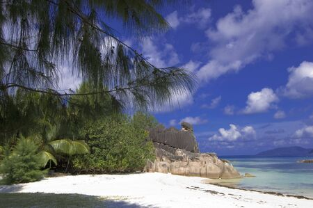 cousin: Beach of Cousin island  located two miles from Praslin, Seychelles