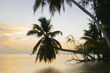Cote D'Or beach Praslin Seychelles at dusk and dawn Stock Photo - 1158265