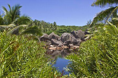 Small hidden cove amid a lush tropical landscape, La Digue island, Seychelles photo