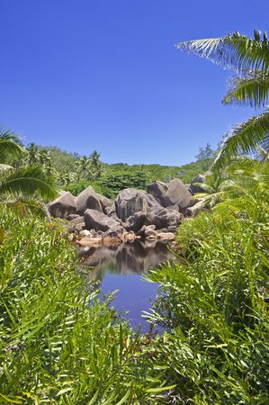hidden cove amid a lush tropical landscape of La Digue island, Seychelles photo