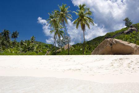 Palm-studded Grand Anse beach of La Digue island,  Seychelles photo