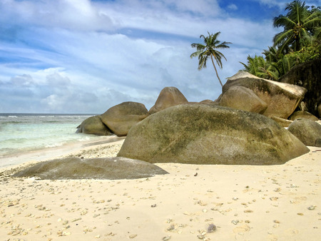 On the edge of sandy beach , Silhouette island, Seychelles photo