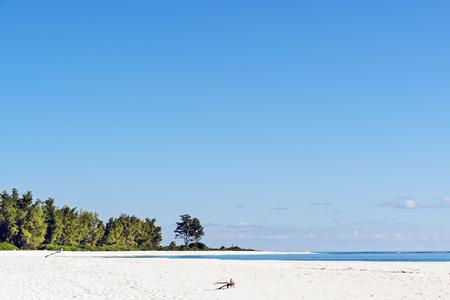 seychelles:  lovely white sand beach m Bird island, Seychelles Stock Photo