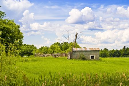 A derelict, small wooden cabin sits abandoned in a lush, green, Ottawa Valley field. Stock Photo - 5065662
