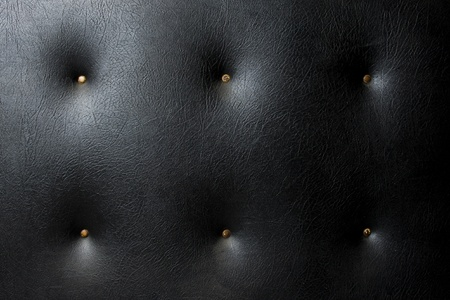 A background texture of black, heavily padded, hide leather like material.