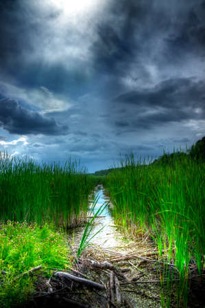 crick: A stormy, ominous looking sky hovers over tall reeds and a small creek, as the sun pokes through to illuminate the marshland below. Stock Photo