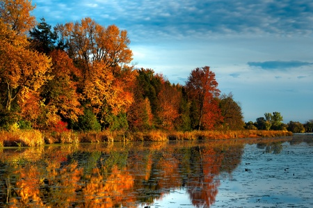 An HDR landscape of a forest in beautiful fall colors reflected in the still waters of a calm river in Ontario, Canada. photo