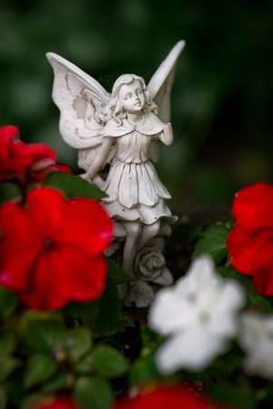 red winged: A small, stone angel or fairy figurine with wings among red and white flowers.