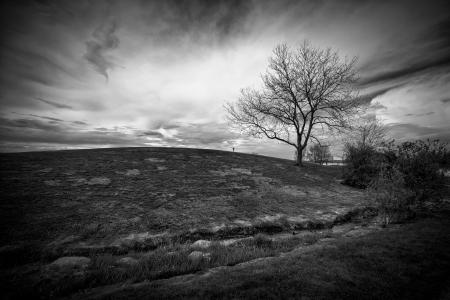 Landschap beeld van een onheilspellende hemel achter een kleine heuvel met een enkele, kale boom, geschoten in zwart-wit dramatisch.