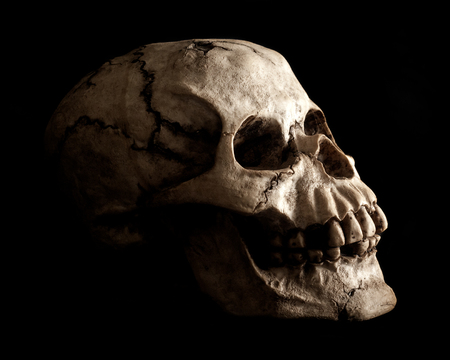 morbidity: An aged and weathered looking human skull prop extruding from shadow on a black background  Stock Photo