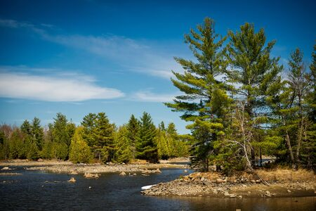 evergreen forest: The rocky shores of a Canadian lake in the Ontario wilderness evergreen forest.