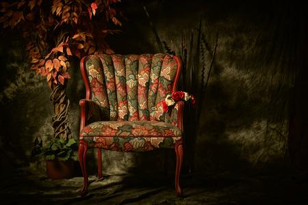 Een lege, antieke patroon stoel doodgeschoten in een clair-obscur verlichting stijl naast kunstmatige plant.