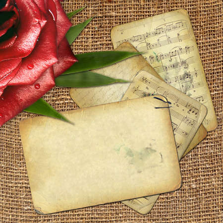 old notebook: grunge old paper for design with red rose