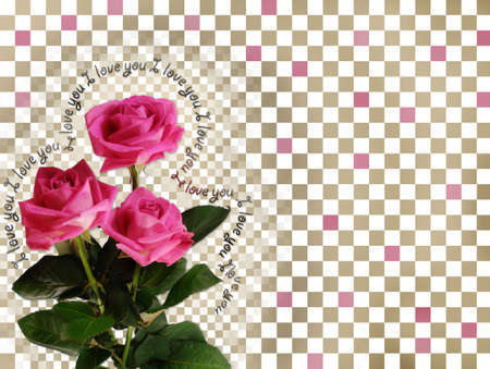 Card with pink roses on abstract background photo