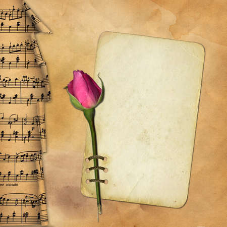 Grunge paper with rose on musical background Stock Photo - 7218472