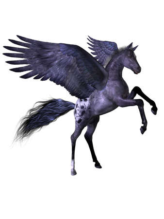 a beautiful flying pony - isolated on white
