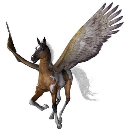 pegaso: un hermoso pony vuelo - aislado en blanco