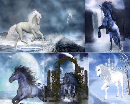 a Collage of dreamy unicorn and wildhorse images