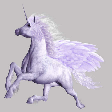 pegasus: a powerful flying Pegasus - isolated on gray