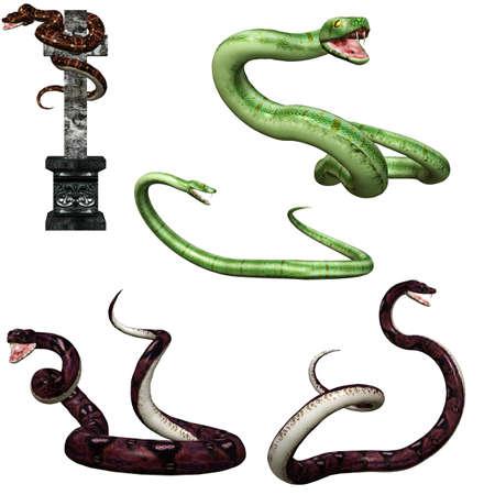 3d snake: a dangerous snake - isolated on white Stock Photo